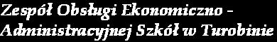 Zespół Obsługi Ekonomiczno-Administracyjnej Szkół Gminy Turobin